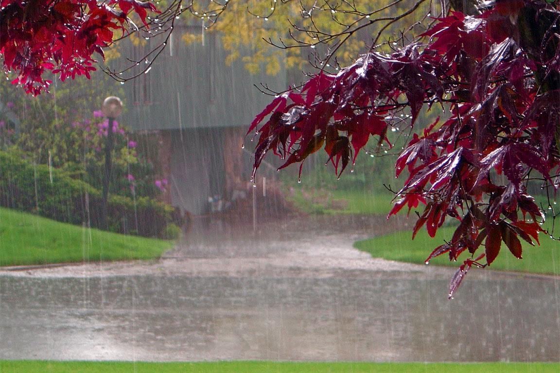 Concorso fotografico a tema sotto la pioggia il corniolo for Sotto la pioggia ombrelli